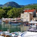 Blue Shark Boat Tours & Transfers bol and golden horn private tour brac6